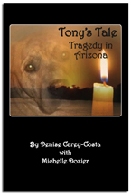 Tony's Tale. Tragedy in Arizona